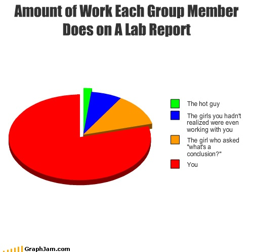 Quot Amount Of Work Each Group Memeber Does On A Lab Report
