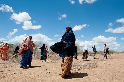 http://adesoafrica.org/  Women in Northeast Kenya clearing a bush to build a fence around a community farm. #Adeso #cashforwork   © Jennifer Huxta