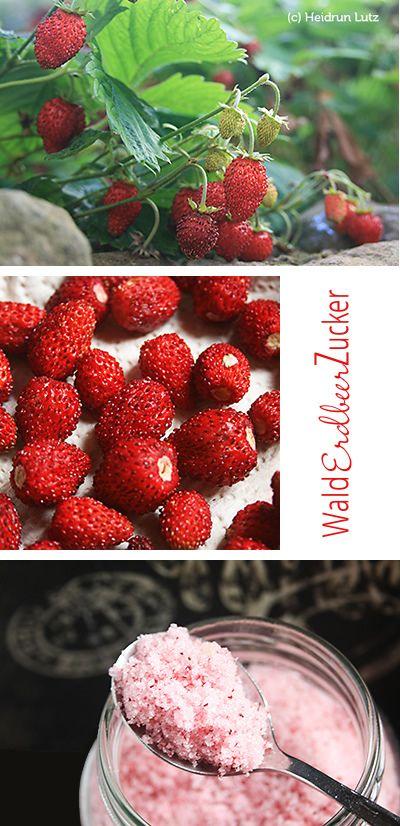 Walderdbeerem Zucker, Fruchtzucker, DIY, wilde Früchte