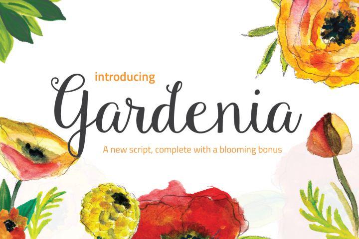 Gardenia + Blooming Bonus from FontBundles.net