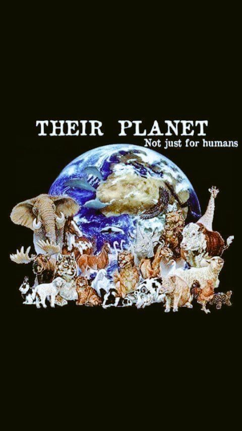 I love earth's Creatures! I hope we don't make them all go Extinct!
