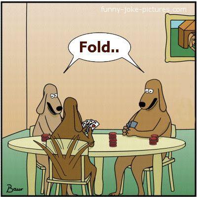 Poker Card Dogs Funny Cartoon Joke Picture