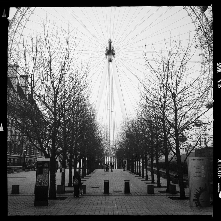 London Eye wide open. South bank, London.