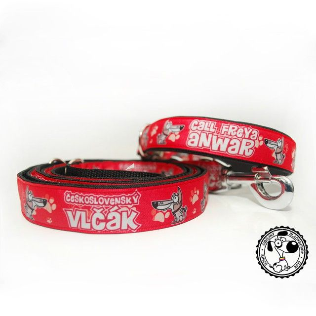 Set obojku a vodítka | Collar and leash set #czechoslovakianwolfdog #ceskoslovenskyvlcak #wolfdog #vlcak #set #collar #leash #obojek #voditko #red #cervena #dog #pes #handmade #rucnivyroba #quality