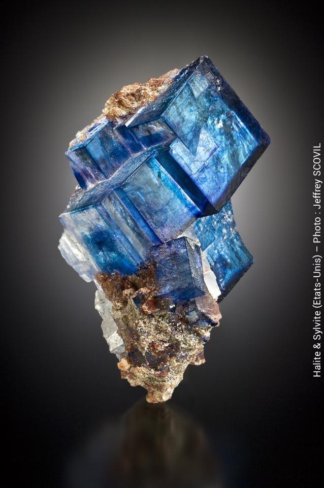 Salon international Minéral Expo Paris, le salon des pierres précieuses: minéraux, pierres taillées, bijoux, fossiles, météorites. Du 4 au 6 décembre 2015 à Paris (Espace Charenton - Paris 12ème).