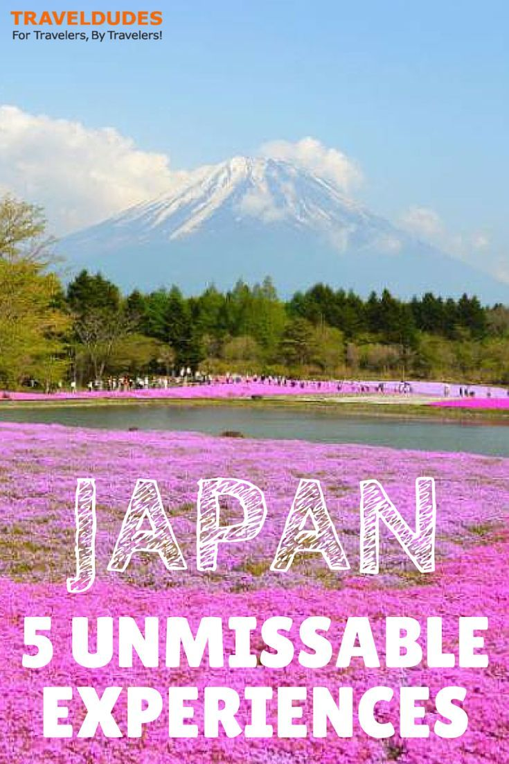 cool Five Unmissable Japanese Experiences