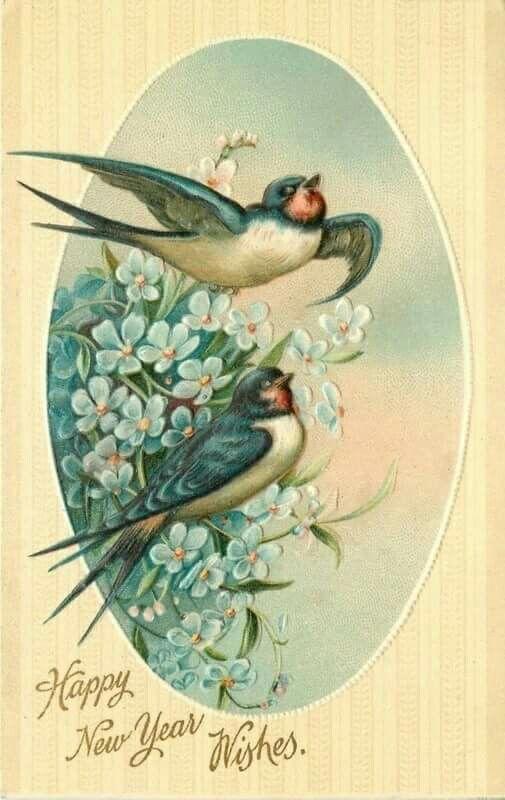 Two Blue birds singing.  Happy New Year. Vintage Card.    Vintage Card.  suzilove.com