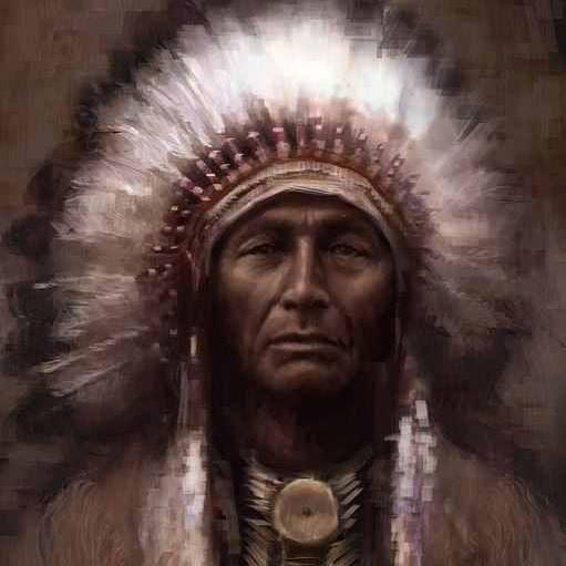 Native - NO FORWARD