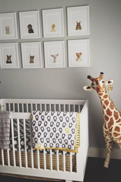 Adorable gender neutral nursery with gray walls adorned with Sharon Montrose The Animal Print Shop art. The nursery features a modern white crib layered with gray and yellow crib bedding. A Melissa & Doug Plush Giraffe stands next to the crib on dark hardwood floors.