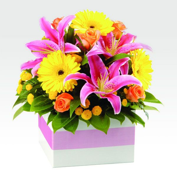 Buy this #harlequin #bright stunning mix of bright, fresh #flowers colour makes for a delighful gift for any occasion! This arrangement comes beautifully finished with a ribbon and complimentary hand made #gifts card for your own personal message.
