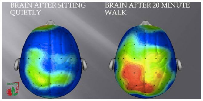 HOW WALKING EVERYDAY AFFECTS YOUR BRAIN