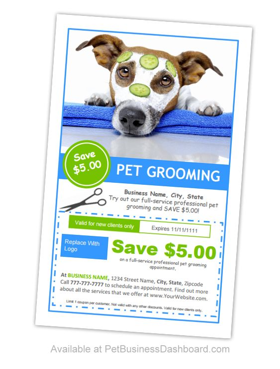 Pet Business Dashboard - Marketing Ideas, Templates, Plans and Products For dog groomers, boarding facilities, kennels, pet sitters and more