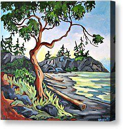 Arbutus Tree Painting Canvas Prints - Arbutus on the Beach Canvas Print by Corinne Orazietti