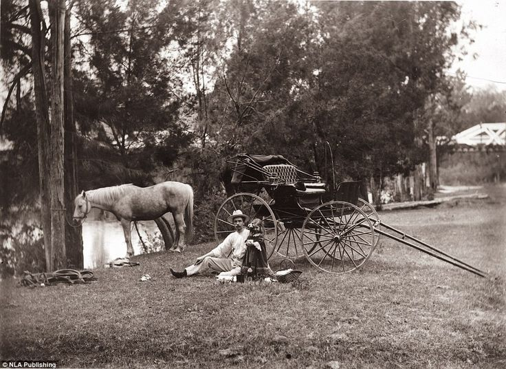 A spin in the buggy followed by a riverside picnic was a popular 19th century pursuit. Thi...