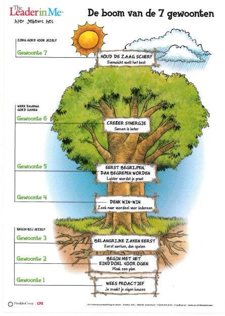 De boom van de 7 gewoonten