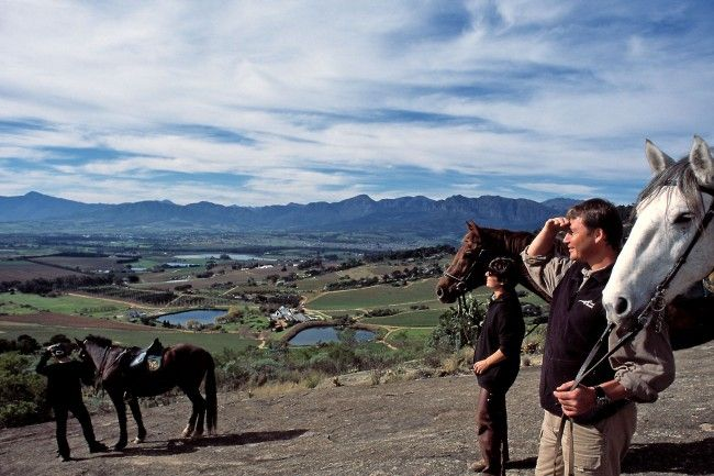 Wine Valley Adventures - Horse Riding near Paarl in the Cape Winelands, South Africa