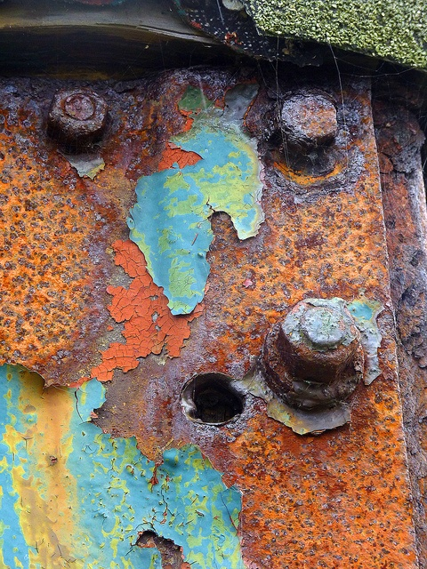 93 Best Images About Rusty Paisley On Pinterest