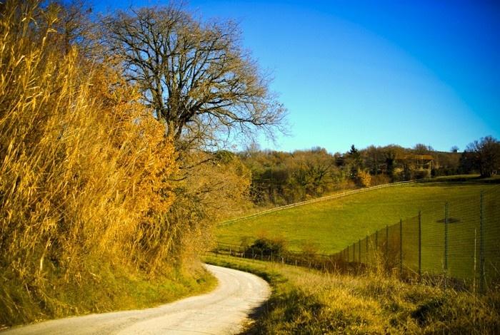 strade di campagna