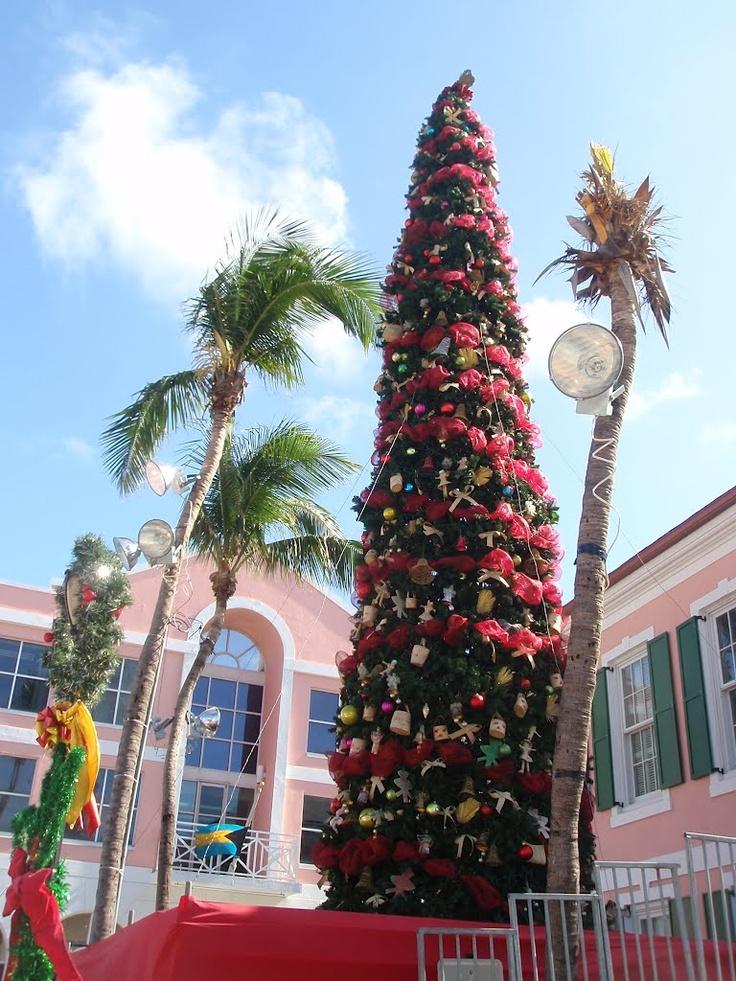 Christmas Lights Palm Trees
