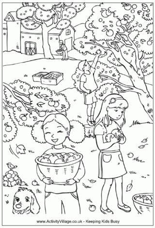 activity village a fall apple orchard coloring sheet - Colouring Activity