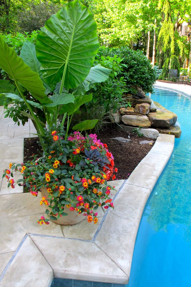 pool pots around waterfall gardening layout - Garden Ideas Around Swimming Pools