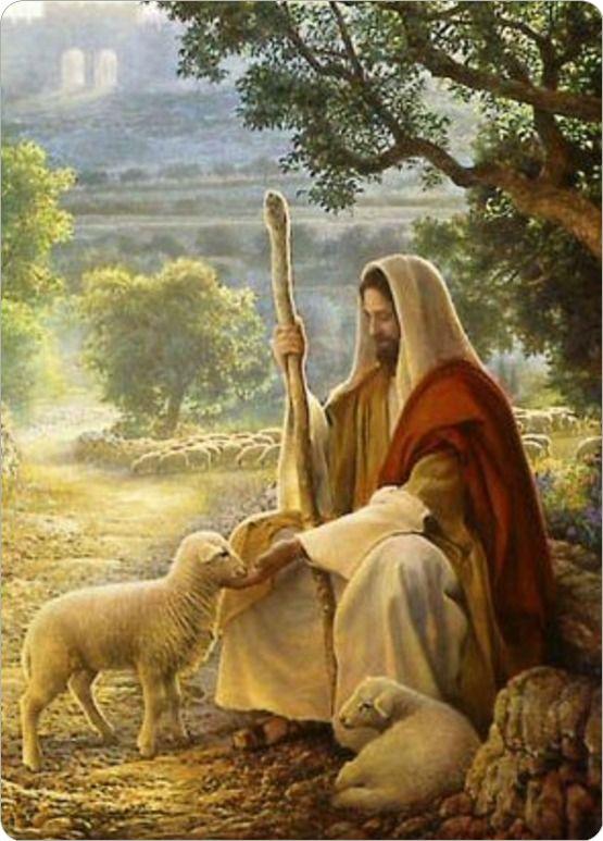 Jezus de Goede Herder,    en heb eeuwige liefde voor jou.