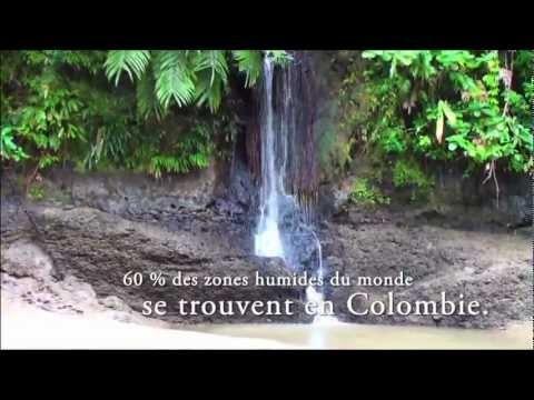 Tourisme vert - Colombia