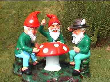 Gnomes are fierce negotiators when it comes to the gold in the garden.  They absolutely insist that the squashes are theirs!