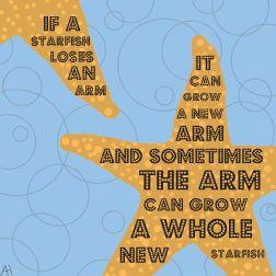 starfish fact