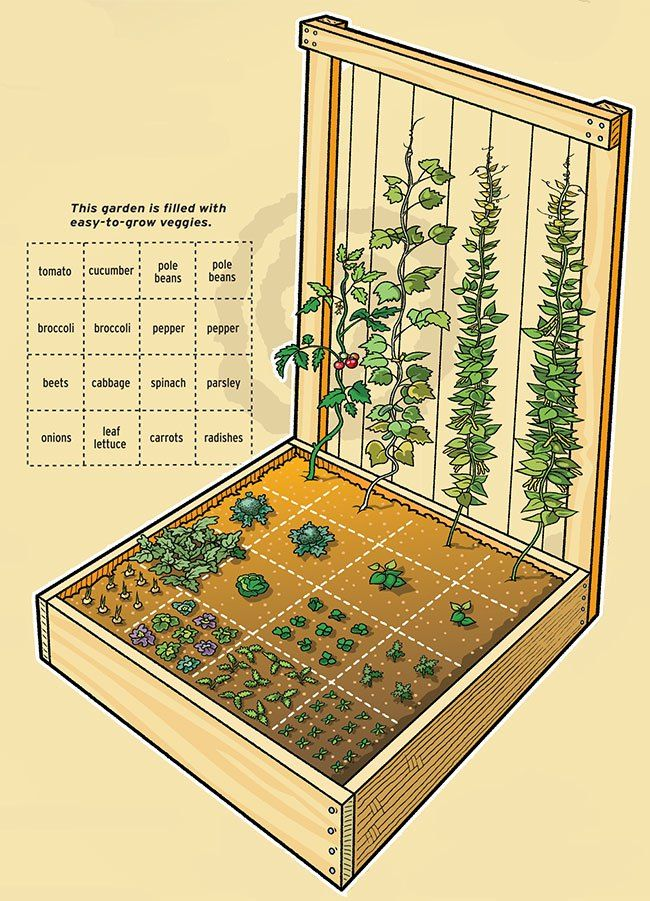 I have decided to grow my own veggies this year!   You want true organic, grow them yourself.