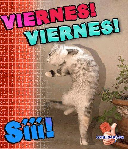 #viernes!! Tus cartelitos en www.cartelitosface.com Añádenos a tus circulos si quieres recibir de nuevo nuestras #frases +Imágenes con Frases - Imágenes con Frases - Google+