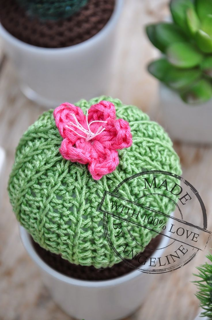Lovely cactus with link to crochet this one on my blog!