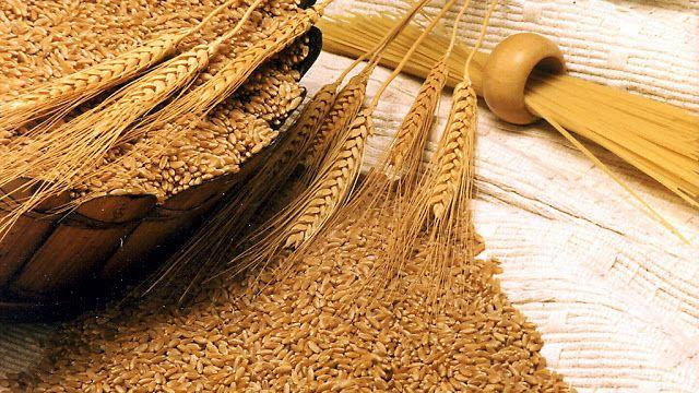 La molienda de trigo creció un 8% entre enero y mayo   Argentina julio de 2017.- La molienda de trigo creció aproximadamente 8% en los primeros cinco meses del año en comparación con igual período del 2016; y de esta forma la producción de harina de trigo aumentó en ese mismo porcentaje de acuerdo a los datos relevados por la Subsecretaría de Mercados Agropecuarios del Ministerio de Agroindustria de la Nación. Entre enero y mayo se industrializaron 2.373.977 toneladas de trigo pan lo que…