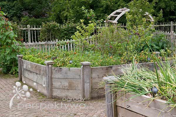 Ogród warzywny w skrzyniach