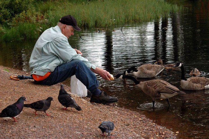 Pak Tua dan burung photo essay
