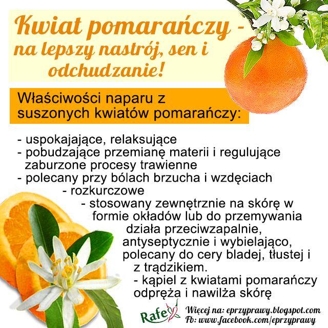 kwiat-pomaranczy.png (640×641)