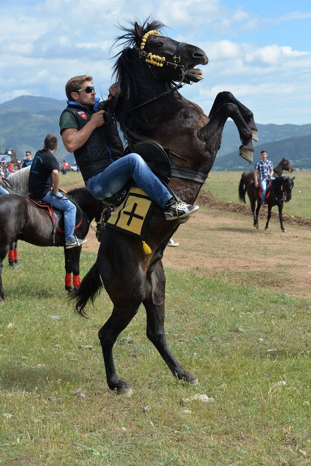 #Φωτογραφία #Αθλητική #Αθλήματα #Ιπασσία #Άλογα #Λάρισα  #Τρίκαλα #Καρδίτσα #Βόλος #Θεσσαλία  #Horses #Riding #sports #sport  #photography #Larissa  #photographer #Προϊόντα #E-shop #Eshop #Commercial #Διαφήμιση www.kpstudio.gr