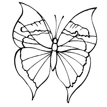 Ideal Butterfly Coloring Page 79 Disney Coloring Page Butterfly