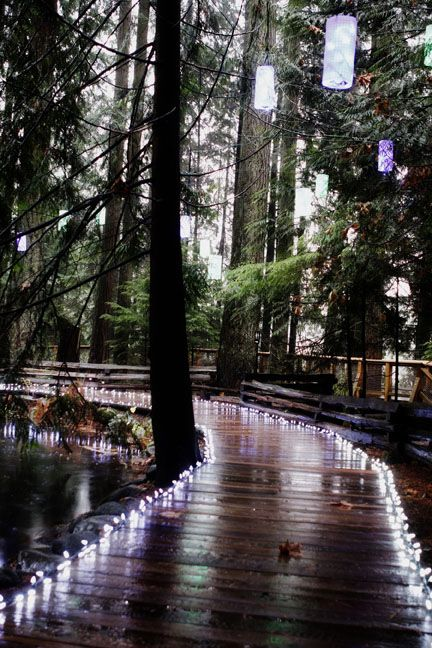 canopy walk at Capilano Suspension Bridge - 15 minutes from downtown Vancouver