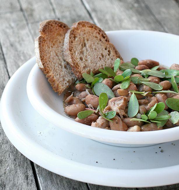 Zuppa tiepida di fagioli e portulaca   http://www.ilpastonudo.it/minestre-e-zuppe/zuppa-tiepida-di-fagioli-e-portulaca/
