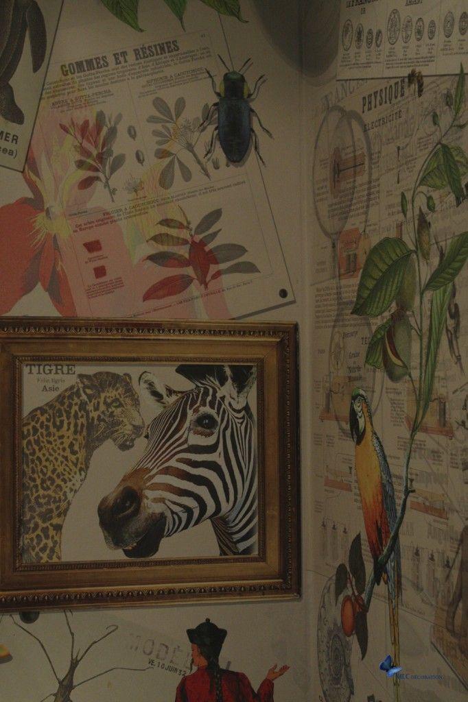 1000 id es sur le th me papier peint des animaux sur pinterest fond d 39 cran 3d art mural. Black Bedroom Furniture Sets. Home Design Ideas