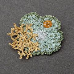 crocheted lichen
