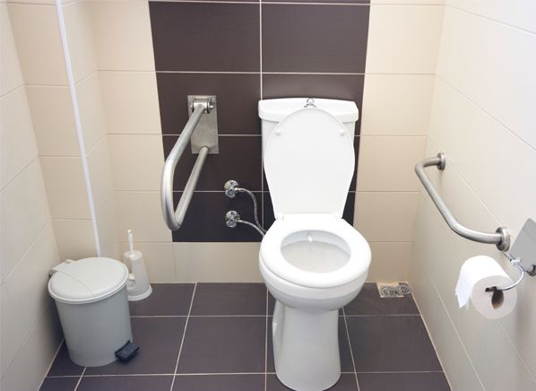 27 Best Toilet Safety Rails Images On Pinterest  Bathrooms Unique Bathroom Safety Bars Review
