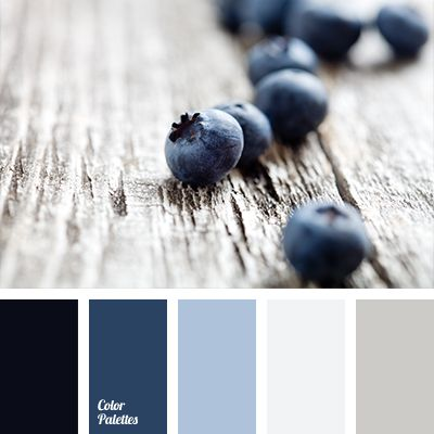 Blueberry shades of blue are well-suited for bathroom decoration. This dark blue will look good on a light gray background, and for accents use lighter sha.