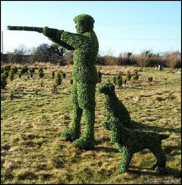 Amazing Topiary: 128 Best Images About Cool Topiaries On Pinterest