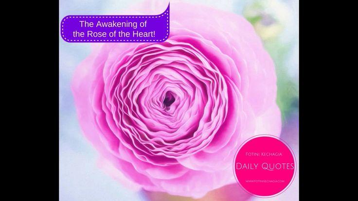 Η Αφύπνιση του Ρόδου της Καρδιάς! The Awakening of the Rose of the Heart!