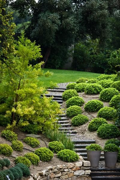 How Prevent Runoff Sloped Lawn Front Yards Landscaping Ideas And