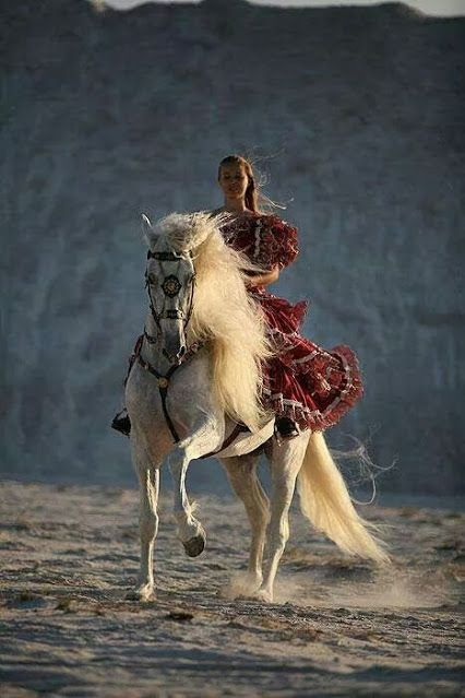 A woman on a horse