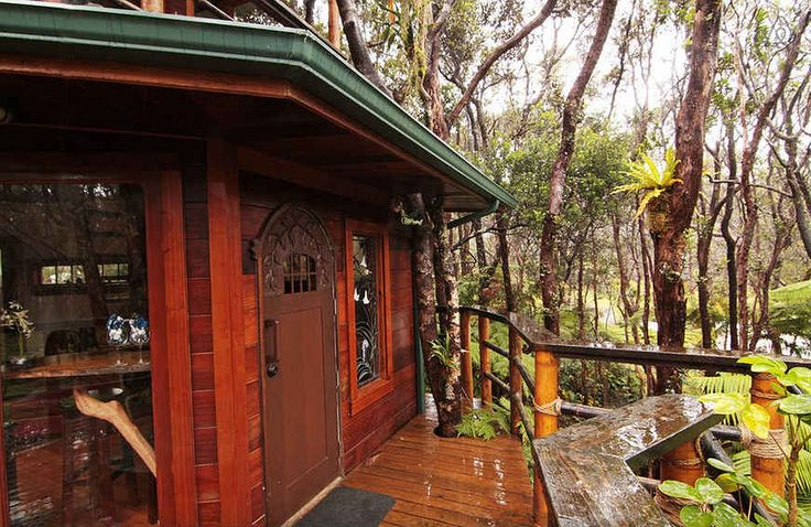 airbnb-casa-na-arvore20-20