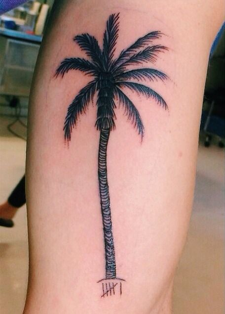 palm tree tattoo jc caylen - Google Search